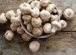Mẹo nhỏ ăn một ít nấm mỡ mỗi ngày hết sợ tiểu đường