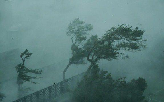 siêu bão Mangkhut ảnh 15