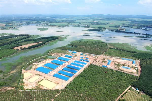 Xây trại heo khổng lồ ngay đầu nguồn cấp nước ảnh 2