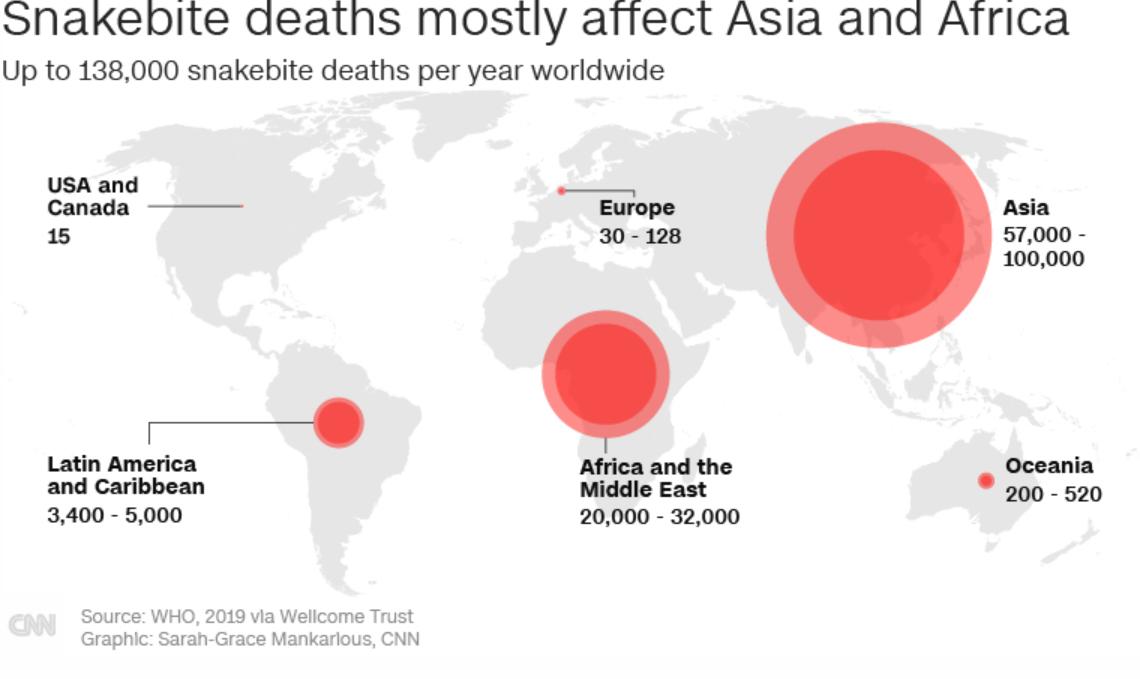 Hơn 138.000 trương hợp tử vong do rắn cắn