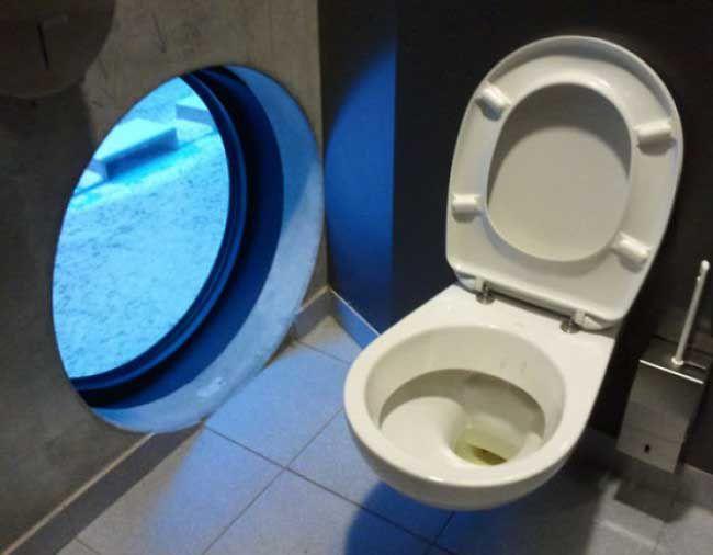 những kiểu thiết kế nhà vệ sinh độc lạ - Ảnh 19
