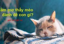 Nằm mơ thấy mèo đánh đề con gì?