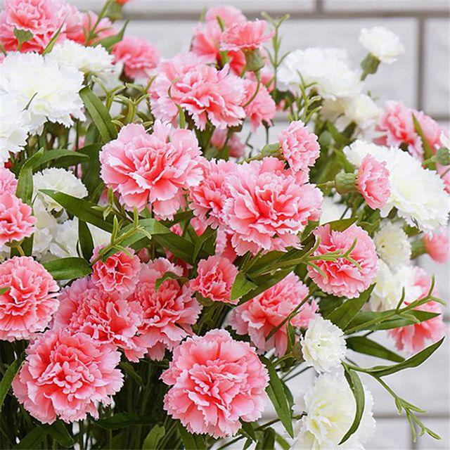 loài hoa tặng mẹ ý nghĩa nhất - ảnh 2